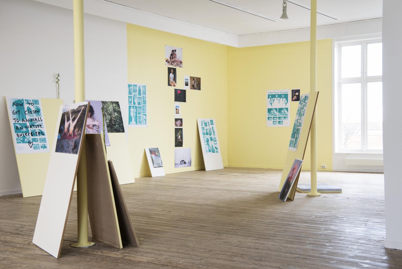 Installasjonsbilde av Melanie Bonajos utstilling.  Foto: Marie von Krogh